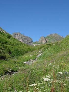 К перевалу (Кавказ 2008)
