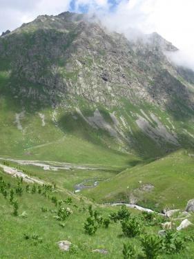 Гороное (Кавказ 2008)