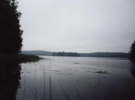 Болота (Карельский 2001)