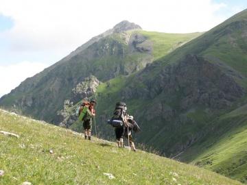 Лоси в горах (Кавказ 2008)