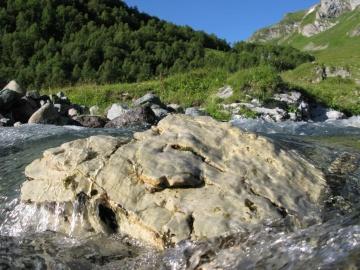 Водяной камень (Кавказ 2008)