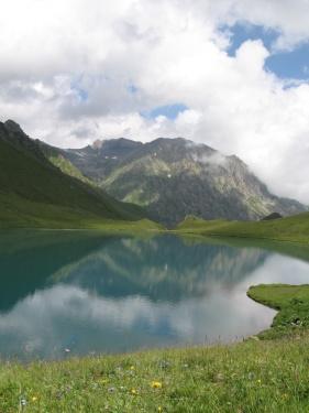 Открытка (Кавказ 2008)