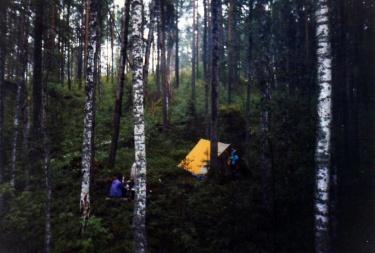 Настоящий лесной лагерь (Кузнечное 2001)