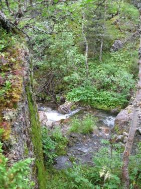 Горная речка (Ловозерье 2009)