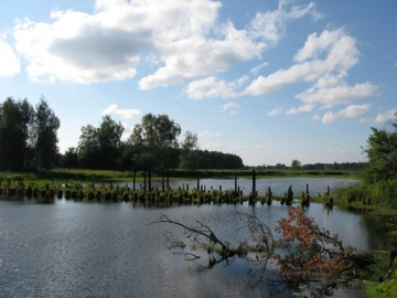 Озеро для купаний (Лух 2010)