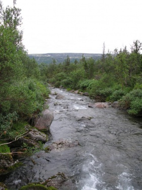 Река (Ловозерье 2009)
