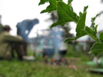 От голода глаза слезятся (Кавказ 2008)