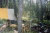 Лагерь (Кузнечное 2001)