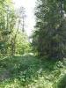 Тропка (Ловозерье 2009)