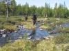 Тундра  (Хибины 2005)