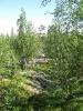Зелень (Ловозерье 2009)