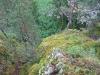 Сторожевая скала (Урал 2007)