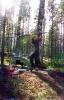 Алексор (Карелия 2003)