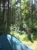 Таганайский лес (Урал 2007)